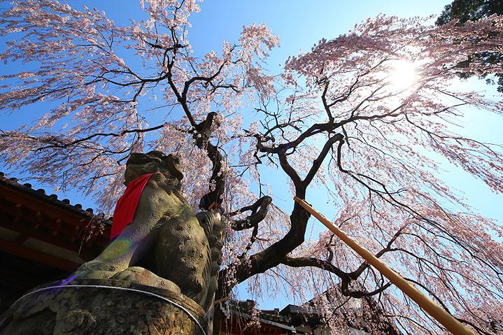 храм Химуро, Нара