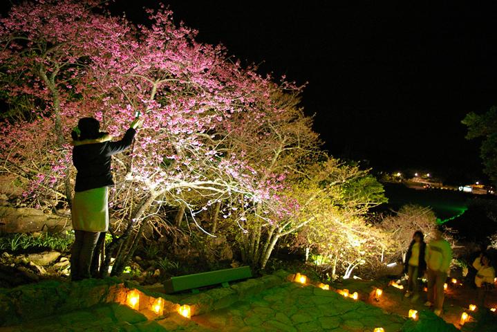 Вечерняя подсветка замка Накидзин, Окинава