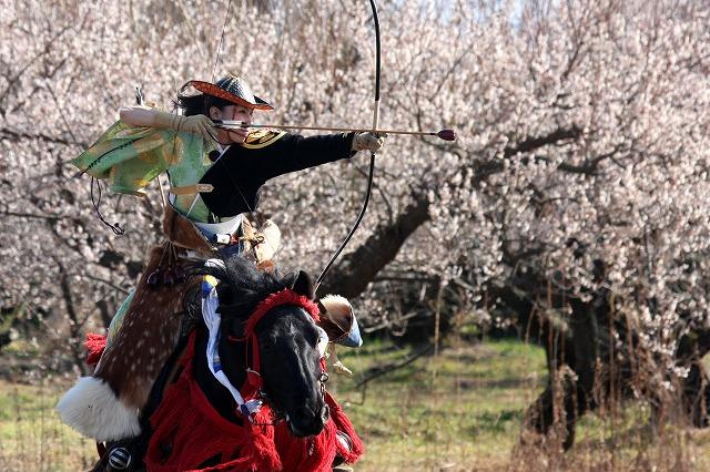 Соревнования ябусамэ на фестивале сливы