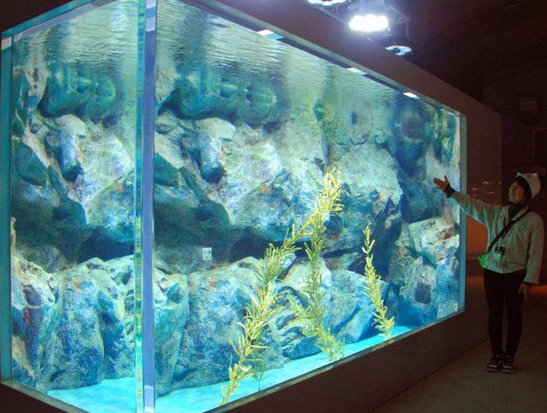 23 апреля океанариум снова примет посетителей