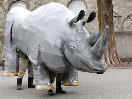 Бумажный беглец в зоопарке Уэно