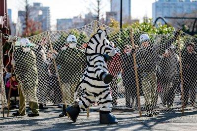 Побег из зоопарка Уэно