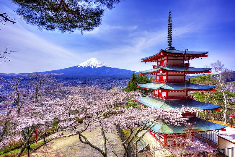 Пятиярусная пагода и сакура