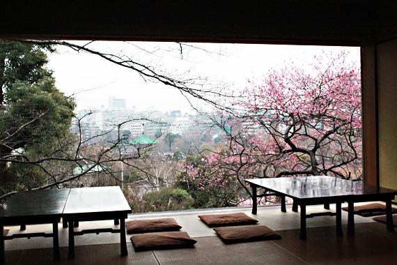 Вид из ресторана Инсётэй