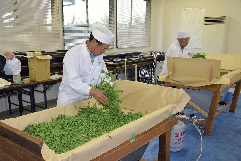 Производство зелёного чая в городе Фудзи
