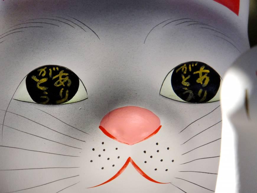 В зрачках написано по-японски аригато — «спасибо»
