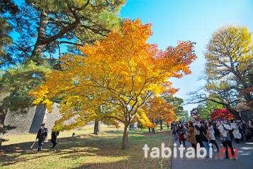 Замок Эдо, Токио, Императорский дворец, вотора Сакаситамон