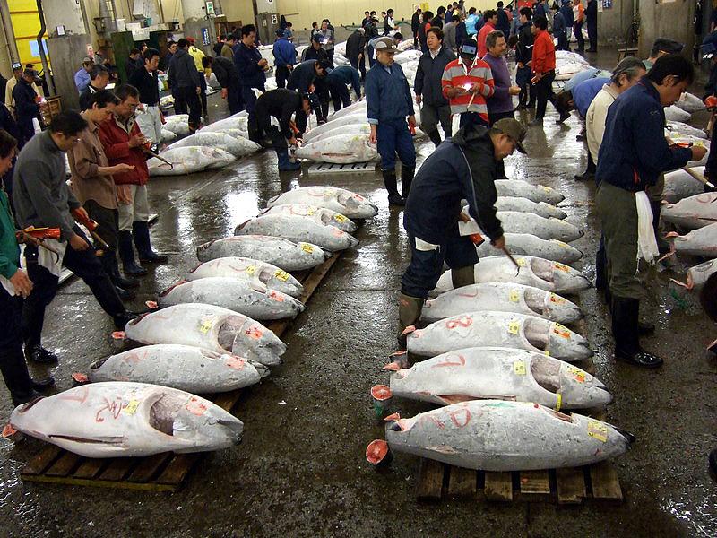 Внутренний рыбный рынок Цукидзи