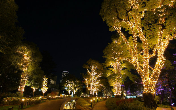 зимние огни Токио