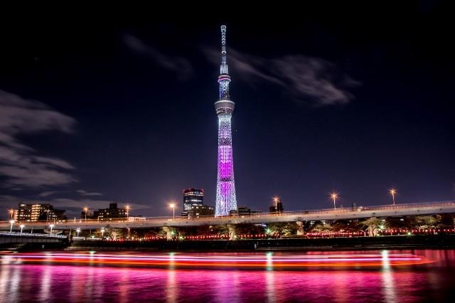 ночные огни Tokyo SkyTree