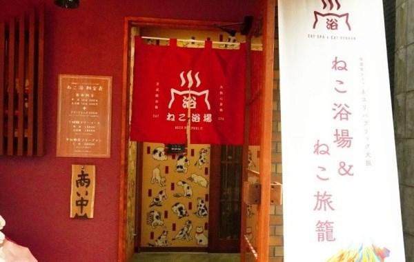 Вход в Neko Yokujo