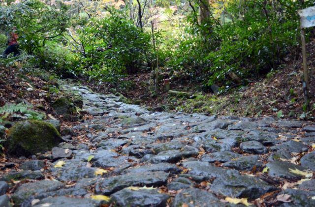 древний тракт Токайдо